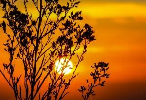 sunset-203188_640